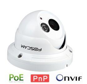 Foscam FI9853EP Megapixel